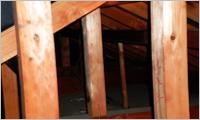 屋根裏構造調査